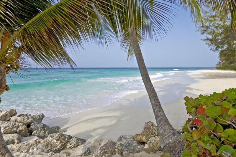 Barbados Cruise & Stay