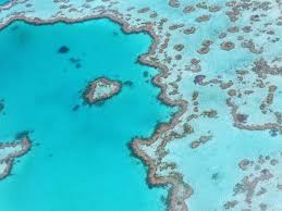 12 Night Great Barrier Reef Cruise