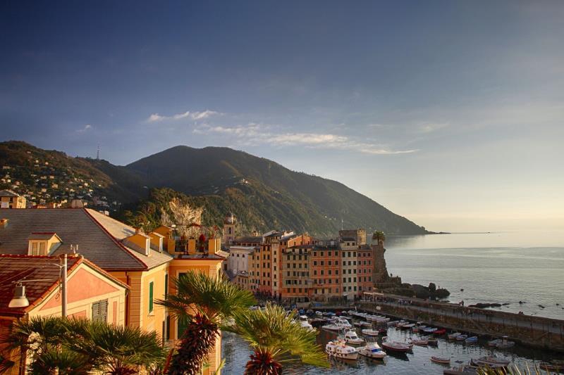 Genoa(8)
