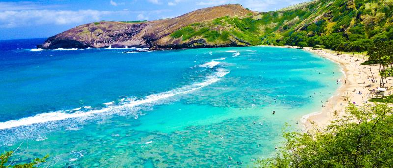 11 Night Hawaii Cruise